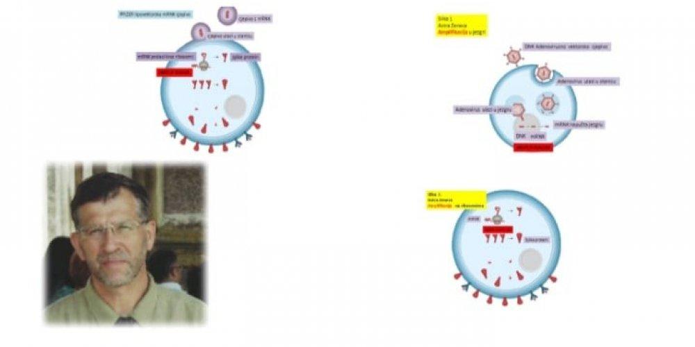 """dr.sc. Srećko Sladojev: Prije dvanaest godina javno sam upozorio na pogibelji cijepljenja protiv LAŽNE """"svinjske"""" PLANdemije koju je osmislio neizlječivo bolesni WHO."""
