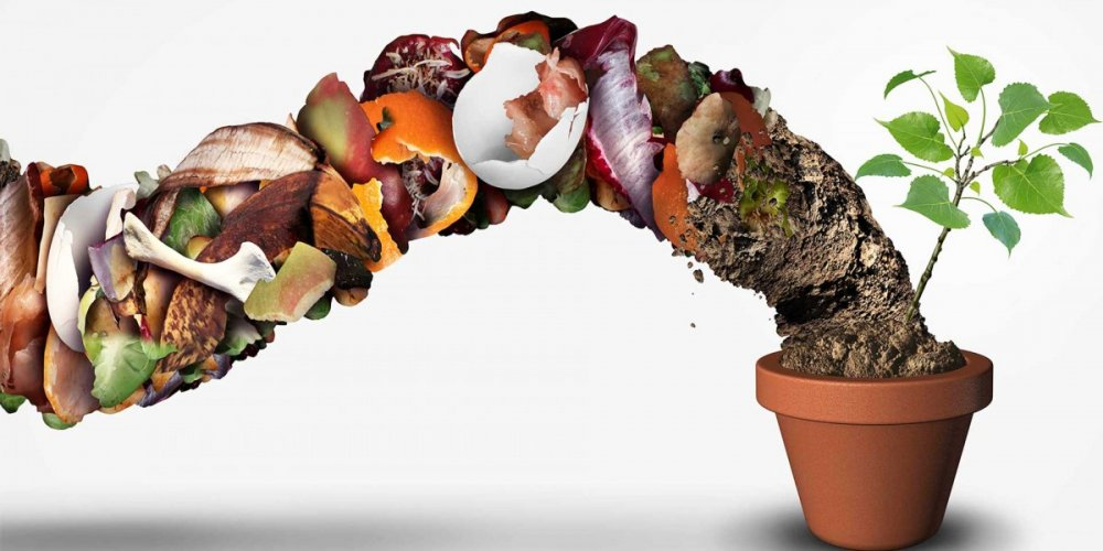 Turn Your Food Waste into useable Compost!