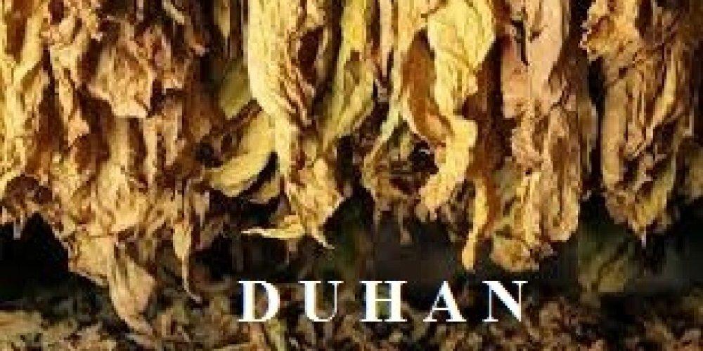 Nestanak hrvatske duhanske industrije?
