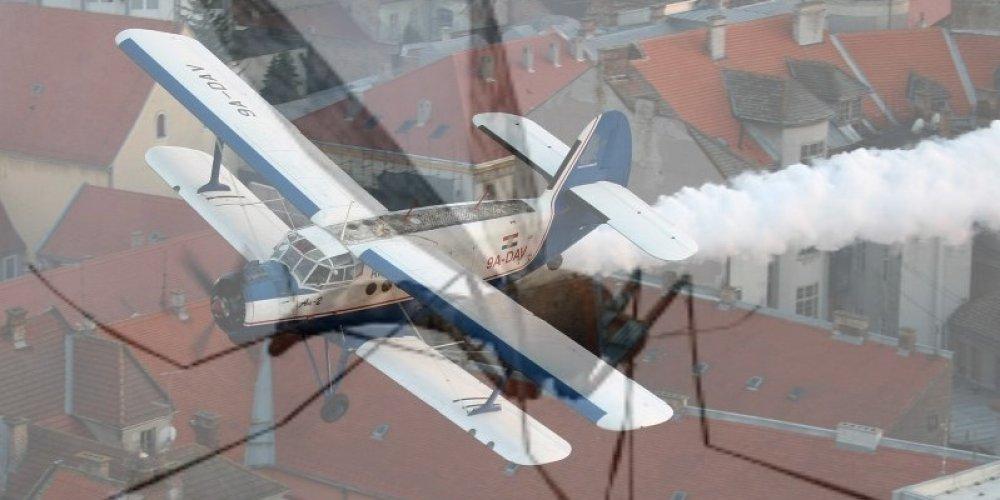 Osijek okupirali komarci